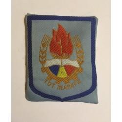 Emblemă de pionier (anii 80)