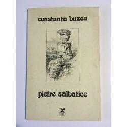 Constanța Buzea - Pietre...